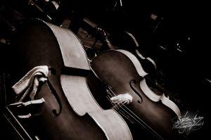 orchestre_vendee_bd-1©stephaneaudran2011.jpg
