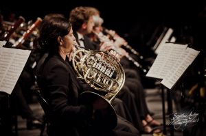 orchestre_vendee_bd-13©stephaneaudran2011.jpg