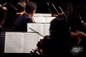orchestre_vendee_bd-16©stephaneaudran2011.jpg