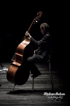 symphonie_du_marais-120©serielstudio2012_bd_033.jpg