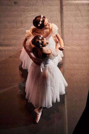 ballet_perm_061_bd.jpg
