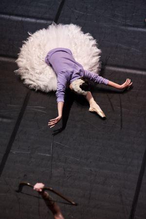 ballet_perm_066_bd.jpg