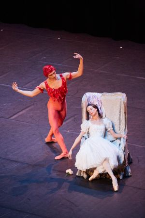 ballet_perm_069_bd.jpg