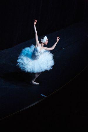 ballet_perm_075_bd.jpg