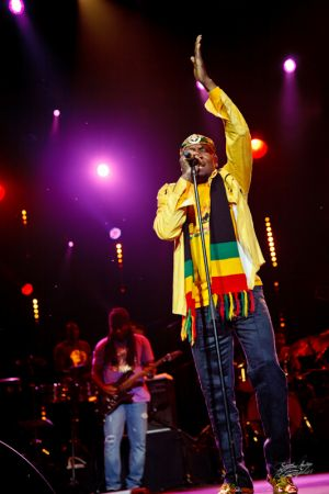 jimmy_cliff©serielstudio2011_11.jpg